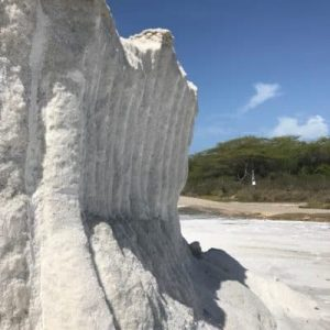 solar sea salt from cabo rojo puerto rico