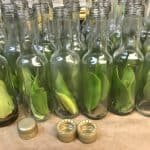 Bottles of alcohol ready to add malagueta leaves prepared by caribbean soaps made in Puerto Rico