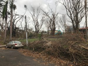 hurricane maria destruction puerto rico