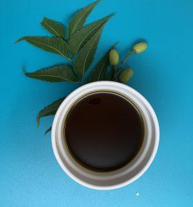 aceite natural de neem prensado en frio con hjas y frutos de neem de puerto rico