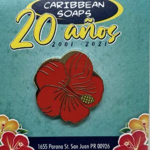 Pin de coleccionistas del 20 aniversario